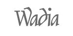 Wadia Digital
